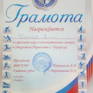 Открытое первенство Черкесска по теннису